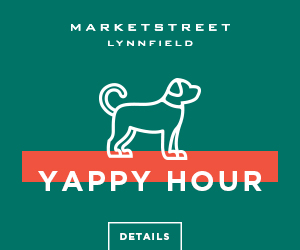 Dogs, dog, doggos events at MarketStreet Lynnfield, dining, shopping and entertainment for families with dogs