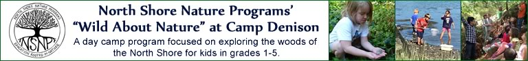 North Shore Nature Programs at Camp Denison