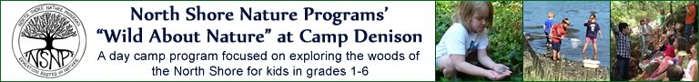 North Shore Nature Programs at Camp Denison in Georgetown Massachusetts