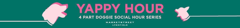 Dogs, dog events at MarketStreet Lynnfield, eining, shopping and entertainment for families with dogs