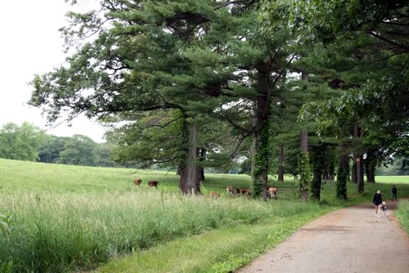 Explore The Trustees of Reservations Appleton Farms and learn about its rich history!