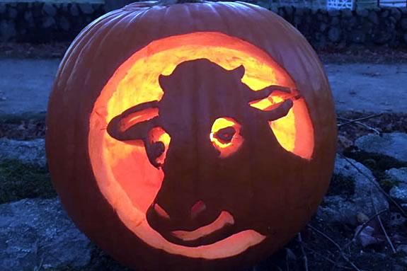 Kids can carve pumpkins at the Trustees Appleton Farms in Ipswich Massachusetts!