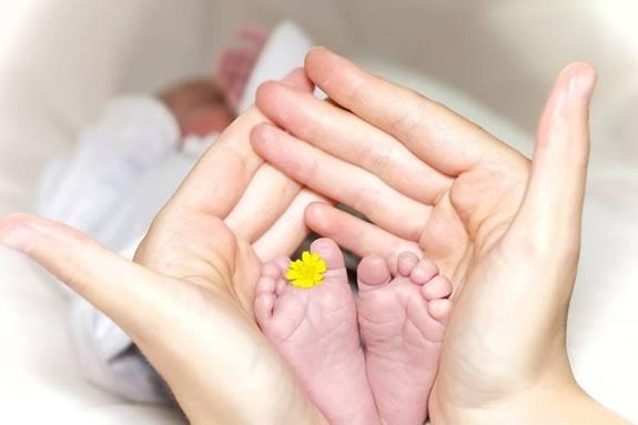 Waldorf School at Moraine Farm hosts a Baby Basics Workshop in Beverly Massachusetts