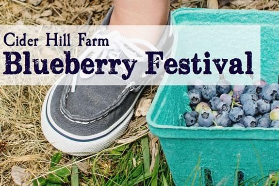 Blueberry & Flower Festival at Cider Hill farm in Amesbury Massachusetts