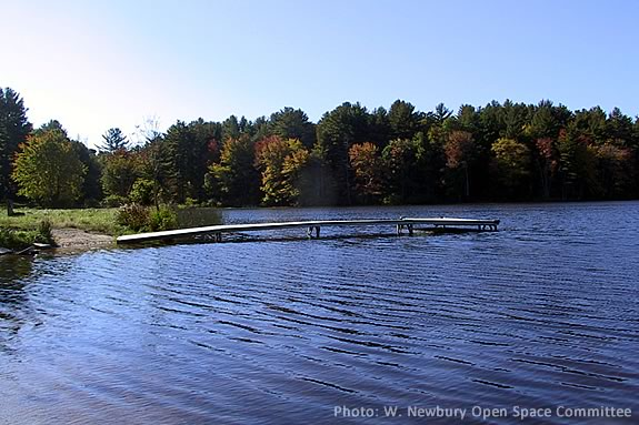 Come to Mill Pond in West Newbury for dipnetting with Mass Audubon Joppa Flats Center during April Vacation Week!