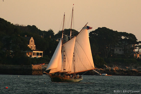 Enjoy a sunset sail with dad aboard the Schooner Thomas Lannon on Fathers Day!