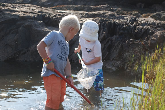 Tide pools for tots is a great opportunity for kids to discover tidal pool creatures and their habitat.