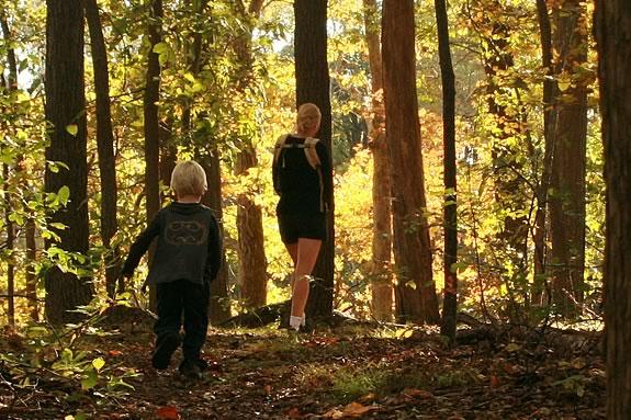 Take a twilight walk at Maudslay State Park in Newburyport Massachusetts!
