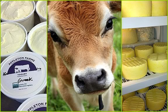 Farm Fresh Yogurt is now available at Appleton Farms in Ipswich