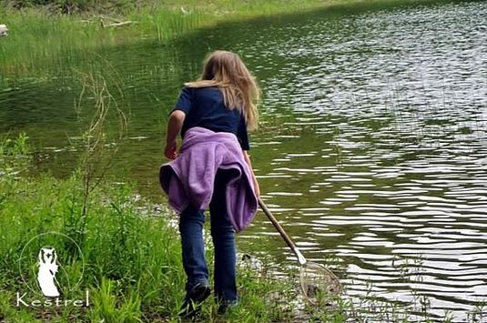 Kestrel Adventures encourages kids to grown through connecting with nature!