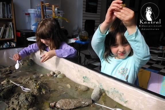 Preschoolers learn while exploring their senses and surroundings at Kestrel Education!