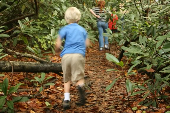 Enjoy a hike on one of the many trails on the North Shore of Boston Massachusetts!