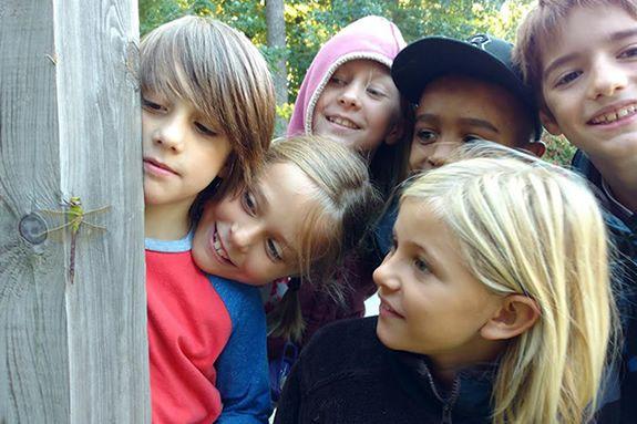 Animal Detective Summer Camp at Waldorf at Moraine Farm