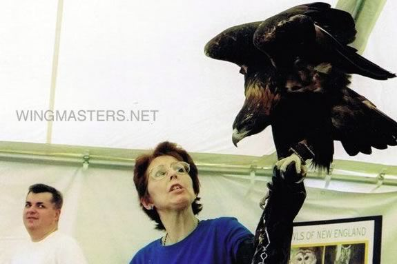 Wingmasters present live North American Birds of Prey at IRWS