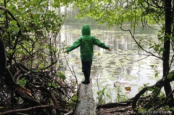 Kids will learn about nature through story, a hike and art at Ipswich River Wildlife Sanctuary.