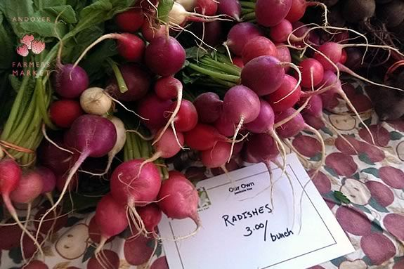 Find Fresh Local Produce at the Andover Massachusetts Farmers Market