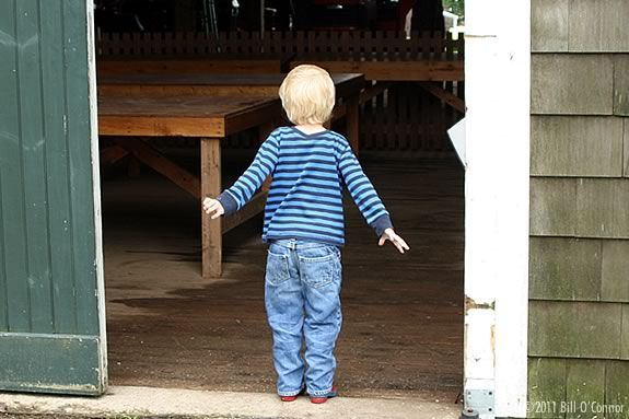 Wagon rides at Appleton Farms in Ipswich Massachusetts. Photo: ©2011 Bill O'Connor