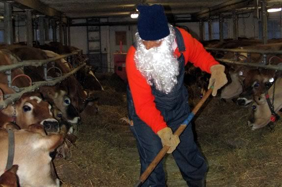 You may run in to the Nisee at The Trsutees' Appleton Farms this time of year!