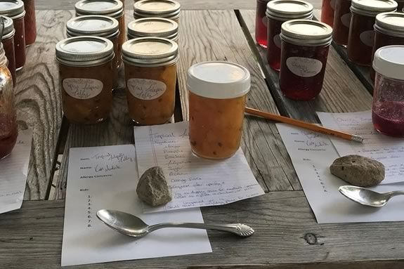 Come to Appleton Farms in Ipswich Massachusetts to swap your own homemade creations with other creative locals!