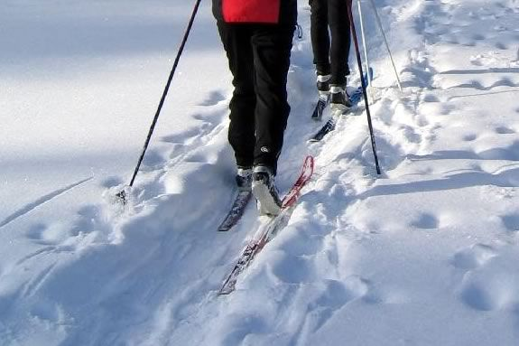 Explore The Trustees of Reservations Appleton Farms in Ipswich on Skis!