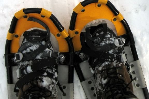 Learn  Snow Shoeing Basics at The Trustees of Reservations' Ward Reservation!