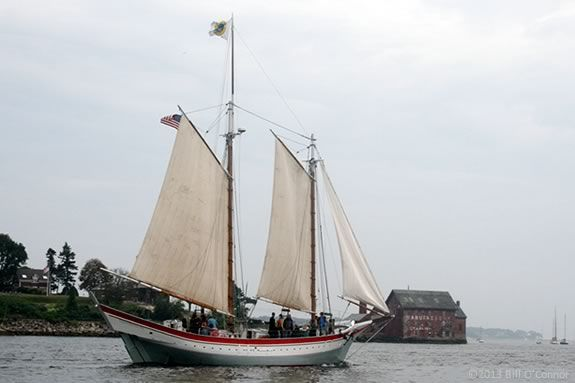 Father's Day Schooner Ardelle free sail in Gloucester MA