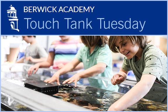 Berwick Academy for grades PreK to 12 in Berwick Maine