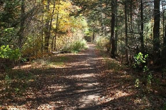 The Beverly Commons Trail Run benefits the Essex County Greenbelt Association