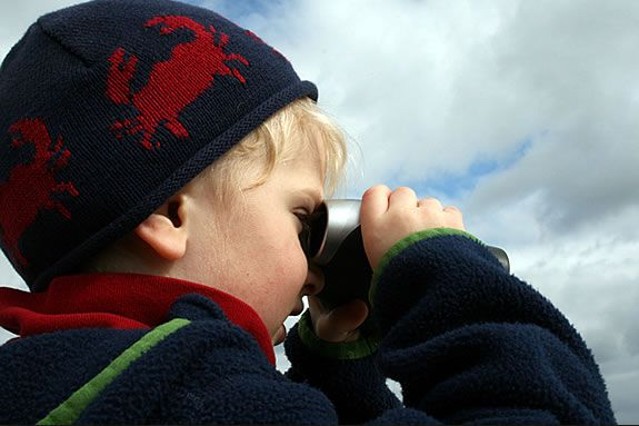 Kids and families will learn about birding at Harold Parker State Forest