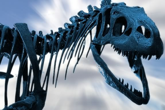 Beverly Library invites kids to explore the world of fossils and dinosaurs!