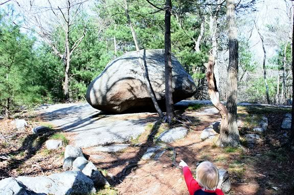 Giant boulders can be found all over Ravenswood Park. How'd they get there?
