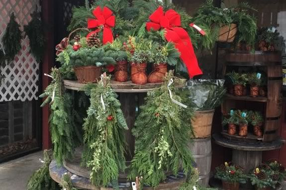 Brooksby Farm in Peabody Massachusetts hosts a Holiday open house for the whole family!