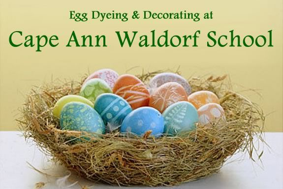 Celebrate Spring by syeing eggs with your family at the Cape Ann Waldorf School