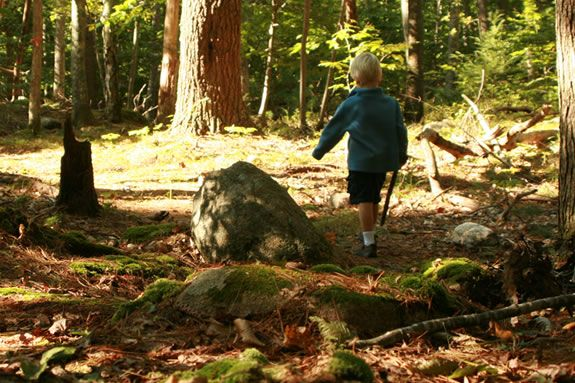 Discover the natural treasures that Ravenswood park offers up in Gloucester, MA