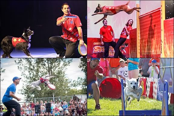 Kids will love Chris Perondi's Stunt Dog experience at the Lynn Auditorium in Lynn Massachusetts