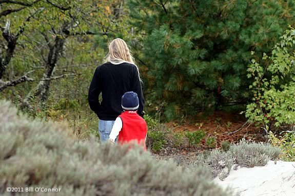 Hike the coastal forest with your child on this parent child walkabout at Joppa