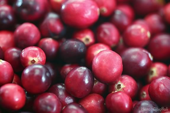 Come to the Crane Estate for a cranberry workshop!