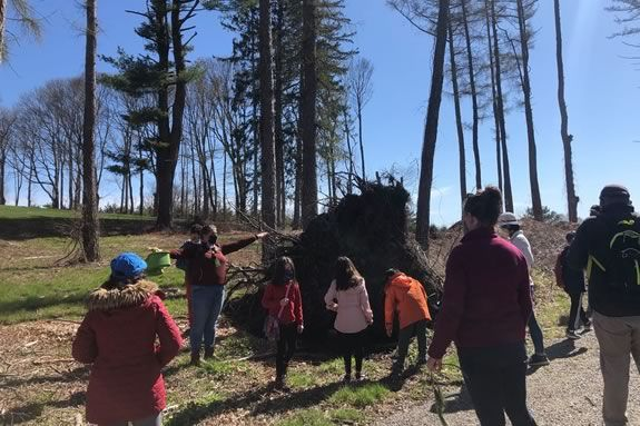 Families are invited to join us for a celebration of all things arboreal, on a guided hike through the Castle hill grounds in Ipswich Massachusetts