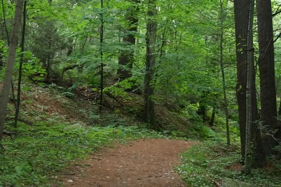 Come learn the trails of Linebrook Woods with ECGA during Trails & Sails 2019