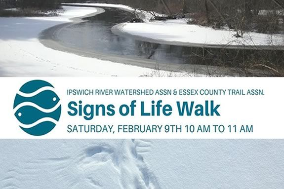 Look for signs of life with the Ipswich Watershed Association and ECGA on this Winter Hike!