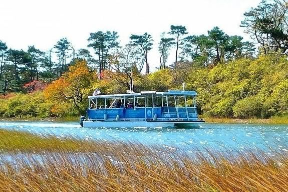 Take a guided tour of the Essex Massachusetts Marshes with Essex River Cruises this Autumn