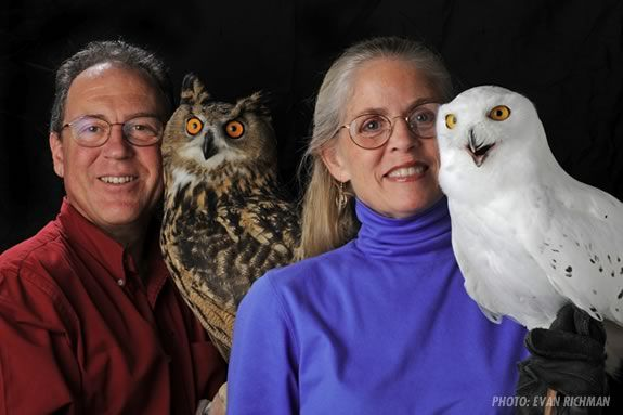 Salem Haunted Happenings features live owl demonstrations with Eyes on Owls!