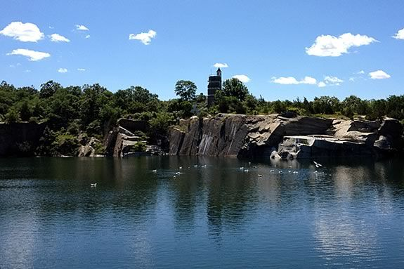 Take a walk around Halibut Point and learn about it's facinating mix of habitats