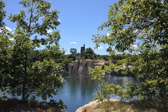 Come learn about the secret life of trees at Halibut Point State Park.