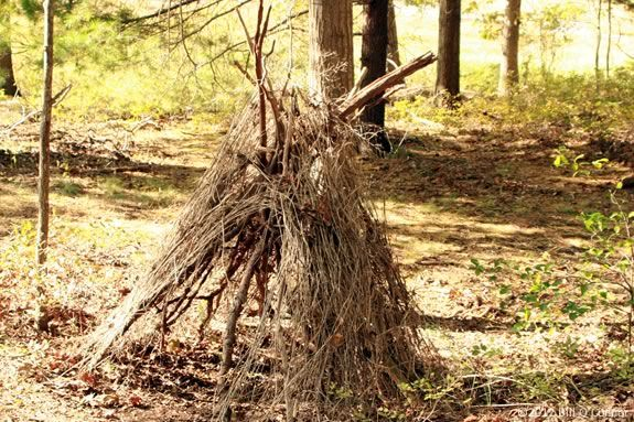 Teens will learnb wilderness survival skills in this session at Mass Audubon's I