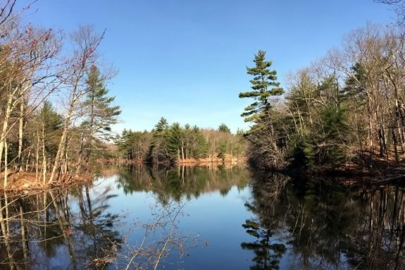 Join the Harold Parker Park Interpreter on this easy to moderate 2-mile hike on the Salem Pond Loop and discover the story of the Civilian Conservation Corps along the way