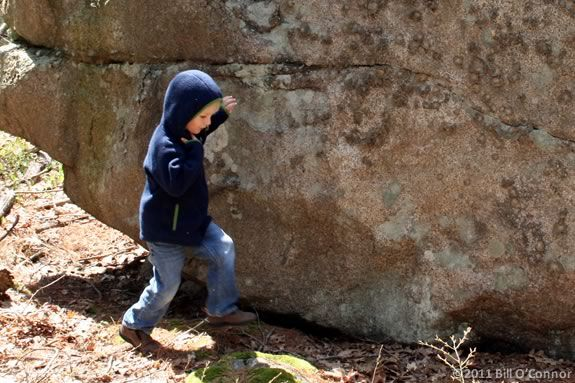 Hikin' Kids is designed to acclimate kids to the forest environment!