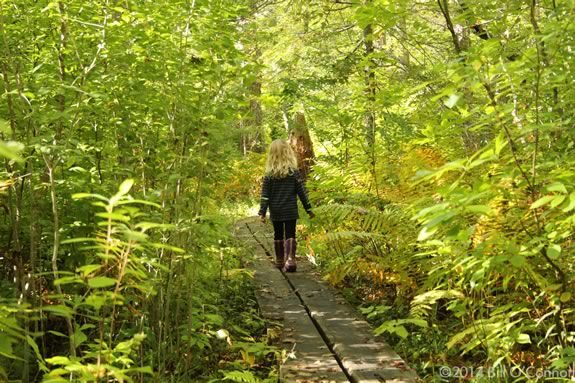 Join Cape Ann YMCA on a hike through the wild of Ravenswood Park in Gloucester Massachusetts!