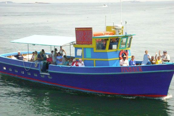 Afternoon Sightseeing Cruise Fall Visit Massachusetts