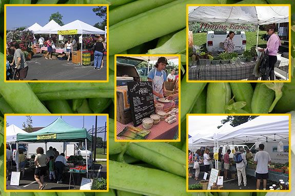 Improve your nutritional intake at the Marblehead Farmer's Market!